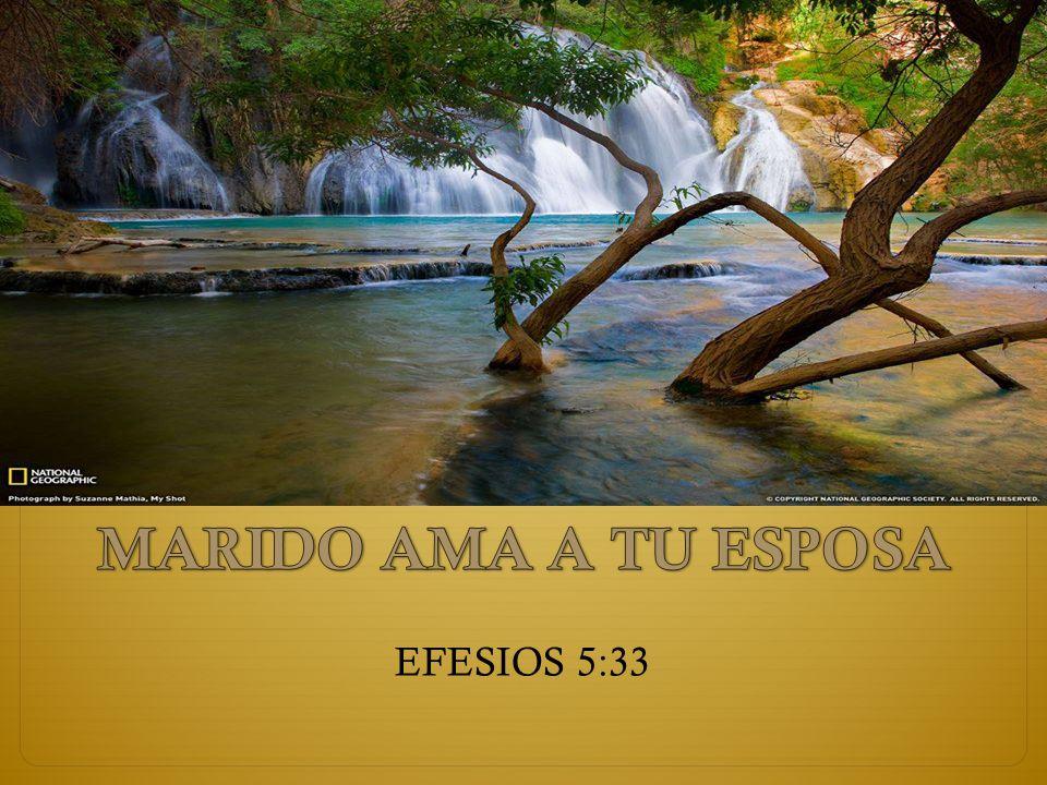 EFESIOS 5:33