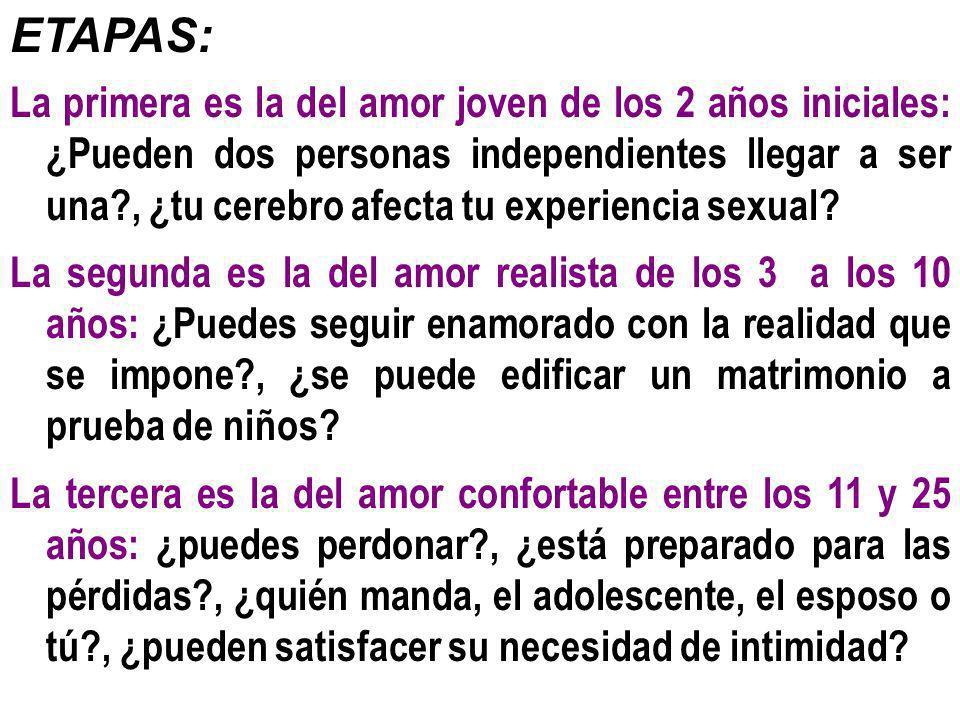 ETAPAS: La primera es la del amor joven de los 2 años iniciales: ¿Pueden dos personas independientes llegar a ser una?, ¿tu cerebro afecta tu experien