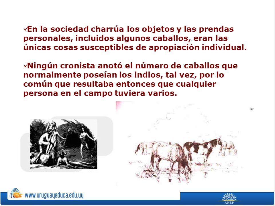 En la sociedad charrúa los objetos y las prendas personales, incluidos algunos caballos, eran las únicas cosas susceptibles de apropiación individual.