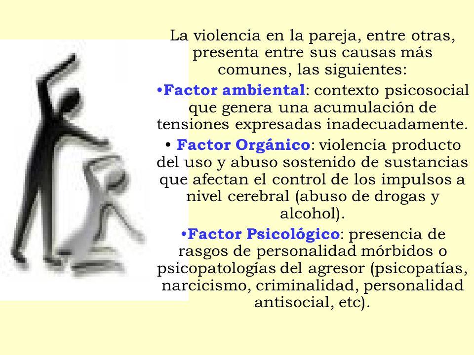 La violencia en la pareja, entre otras, presenta entre sus causas más comunes, las siguientes: Factor ambiental : contexto psicosocial que genera una