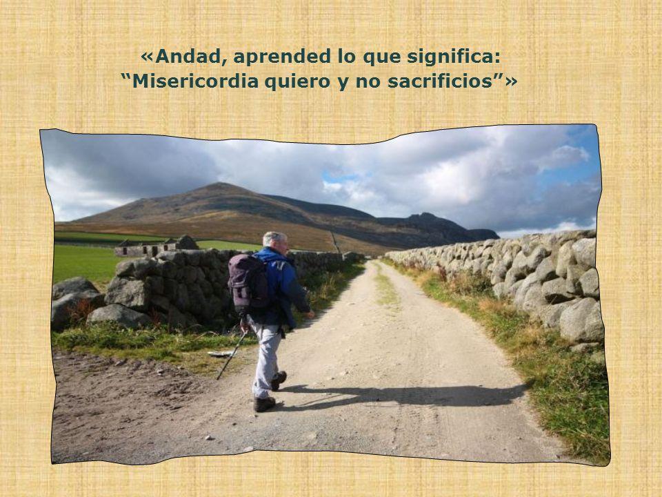 «Andad, aprended lo que significa: Misericordia quiero y no sacrificios»