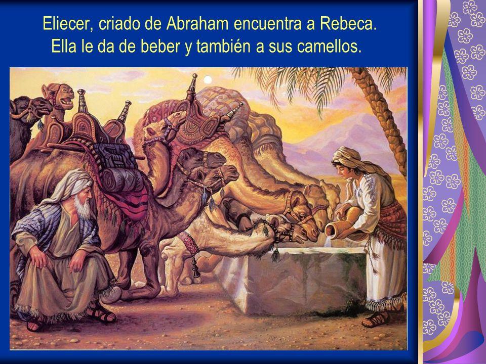 Eliecer, criado de Abraham encuentra a Rebeca. Ella le da de beber y también a sus camellos.