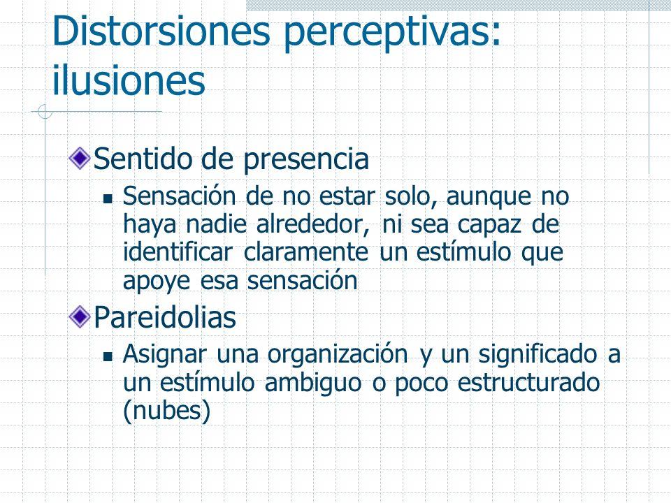 Distorsiones perceptivas: ilusiones Sentido de presencia Sensación de no estar solo, aunque no haya nadie alrededor, ni sea capaz de identificar clara