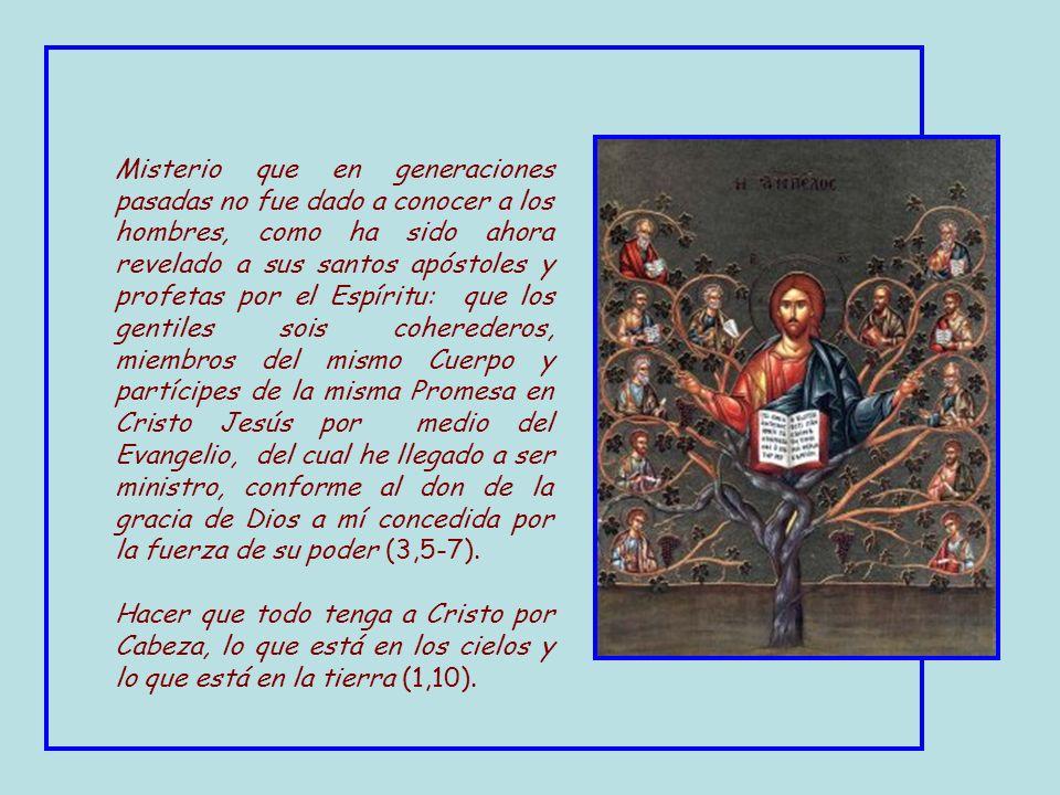 El mismo « dio » a unos el ser apóstoles; a otros, profetas; a otros, evangelizadores; a otros, pastores y maestros, para el recto ordenamiento de los