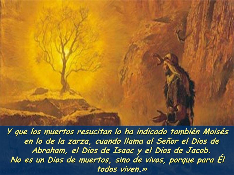 ni pueden ya morir, porque son como los ángeles, y son hijos de Dios, siendo hijos de la resurrección.