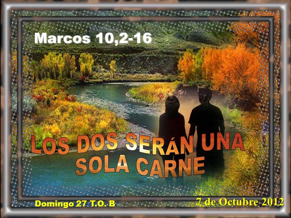 Domingo 27 T.O. B Domingo 27 T.O. B Marcos 10,2-16 7 de Octubre 2012