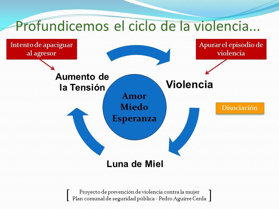 Proyecto de prevención de violencia contra la mujer Plan comunal de seguridad pública - Pedro Aguirre Cerda ] [ Profundicemos el ciclo de la violencia