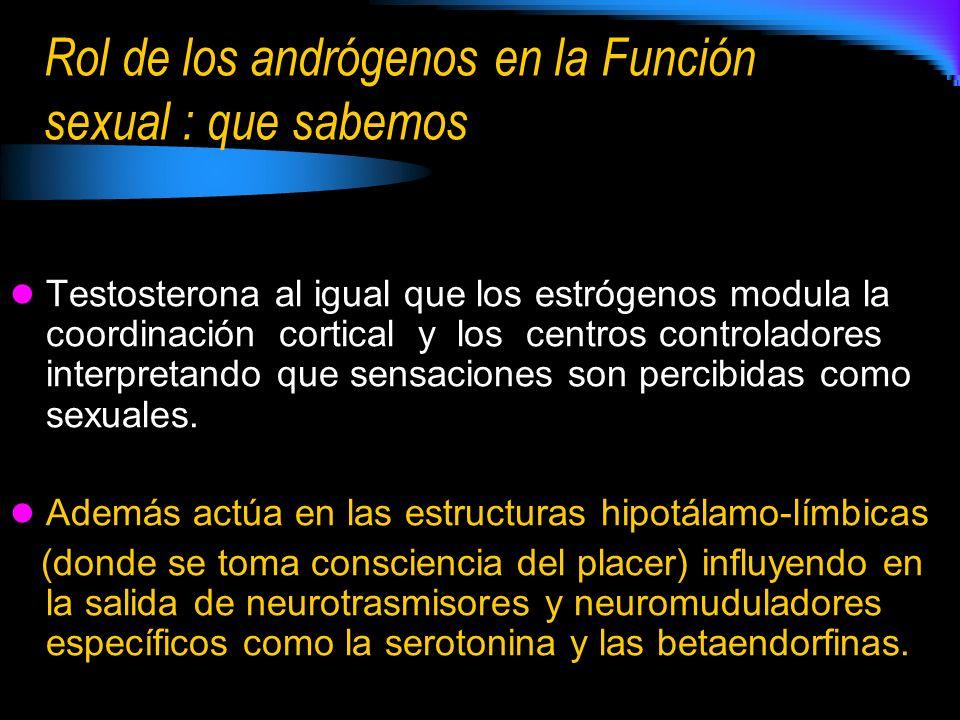 Rol de los andrógenos en la Función sexual : que sabemos Testosterona al igual que los estrógenos modula la coordinación cortical y los centros controladores interpretando que sensaciones son percibidas como sexuales.