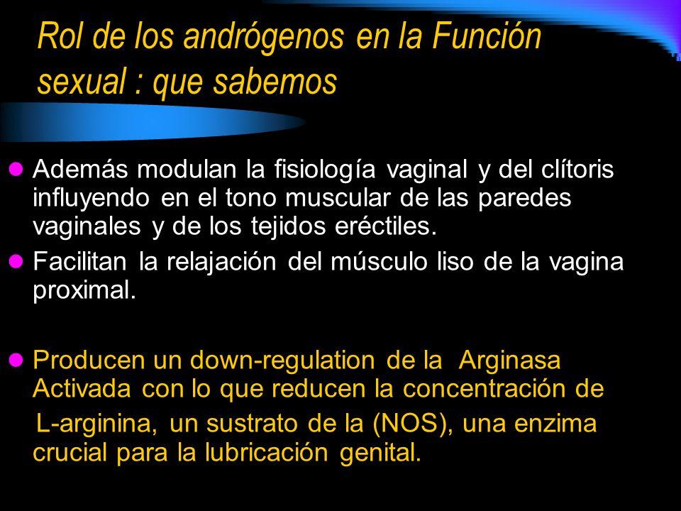 Rol de los andrógenos en la Función sexual : que sabemos Además modulan la fisiología vaginal y del clítoris influyendo en el tono muscular de las paredes vaginales y de los tejidos eréctiles.