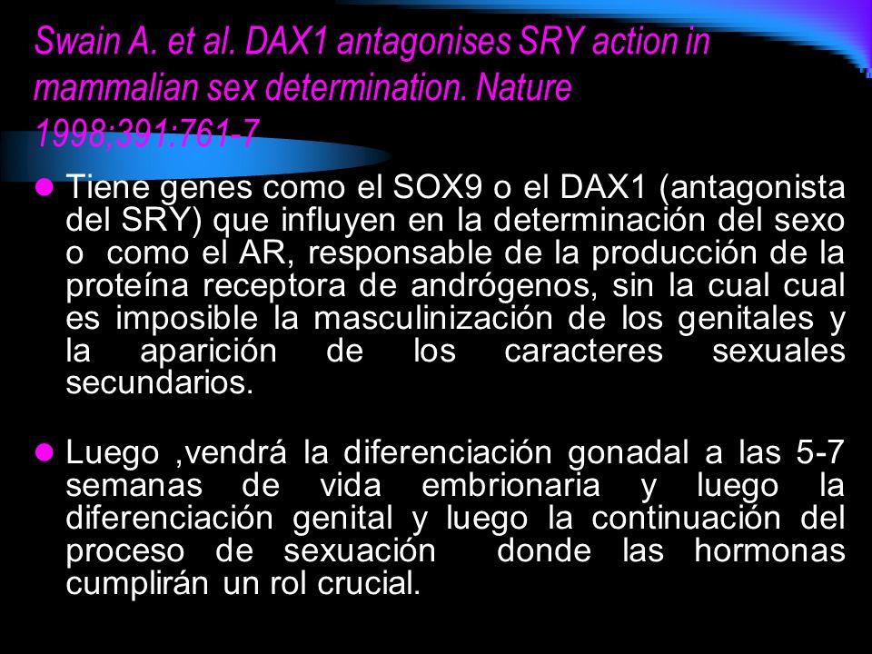 Swain A. et al. DAX1 antagonises SRY action in mammalian sex determination. Nature 1998;391:761-7 Tiene genes como el SOX9 o el DAX1 (antagonista del