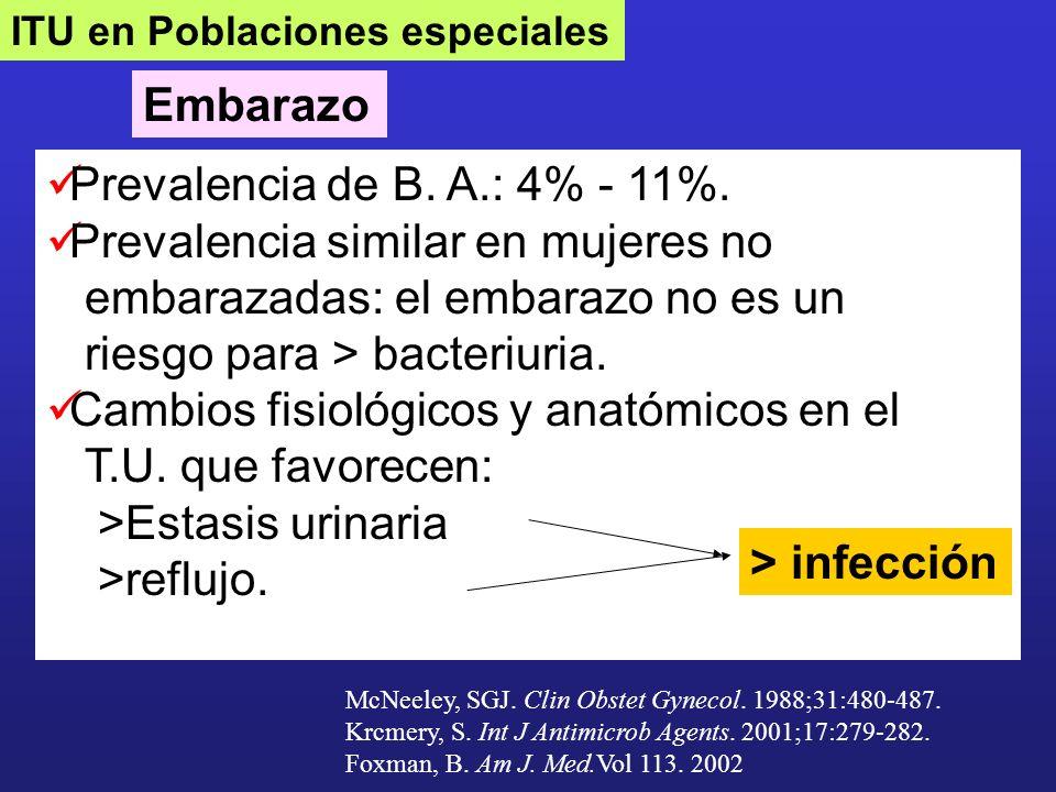 Embarazo Prevalencia de B. A.: 4% - 11%. Prevalencia similar en mujeres no embarazadas: el embarazo no es un riesgo para > bacteriuria. Cambios fisiol