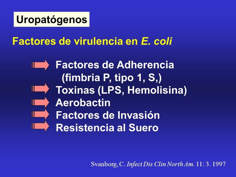 Uropatógenos Factores de virulencia en E. coli Factores de Adherencia (fimbria P, tipo 1, S,) Toxinas (LPS, Hemolisina) Aerobactin Factores de Invasió