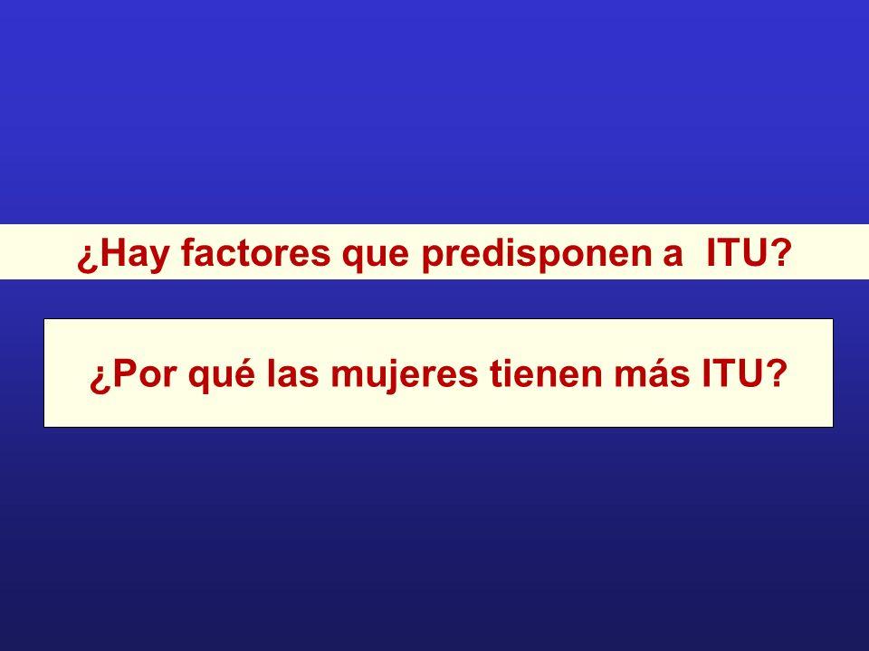 ¿Hay factores que predisponen a ITU? ¿Por qué las mujeres tienen más ITU?
