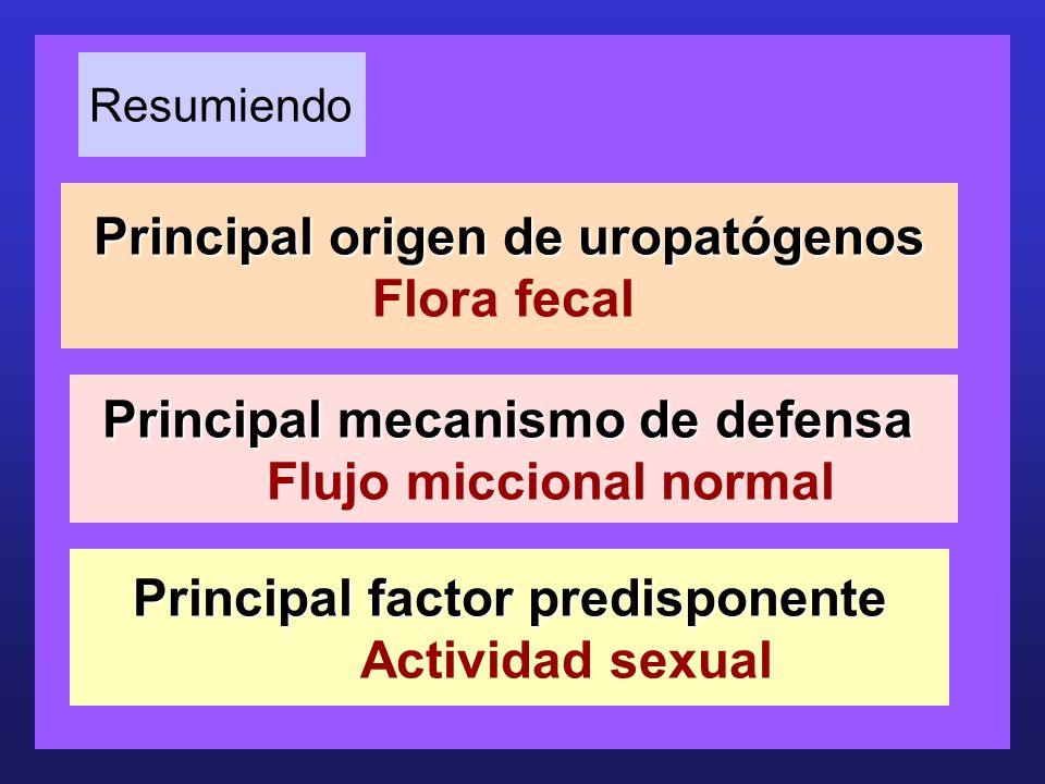 Principal origen de uropatógenos Principal origen de uropatógenos Flora fecal Principal mecanismo de defensa Principal mecanismo de defensa Flujo micc