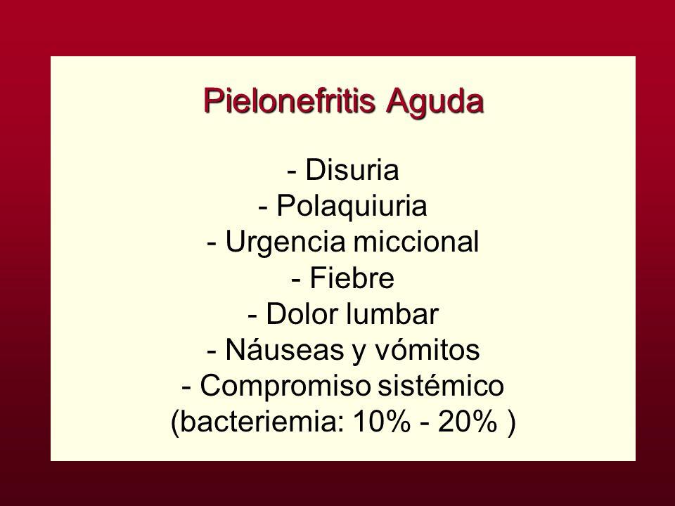 Pielonefritis Aguda Pielonefritis Aguda - Disuria - Polaquiuria - Urgencia miccional - Fiebre - Dolor lumbar - Náuseas y vómitos - Compromiso sistémic