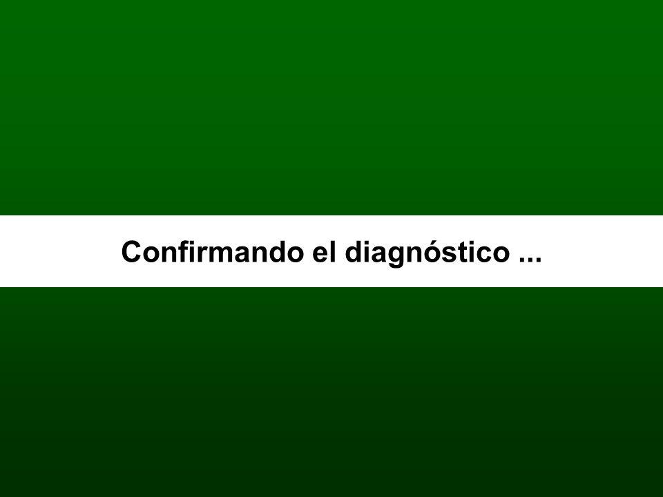 Confirmando el diagnóstico...