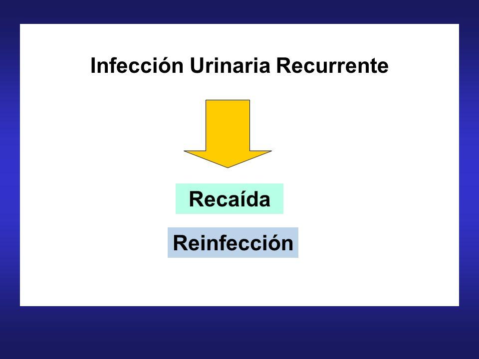 Infección Urinaria Recurrente Reinfección Recaída