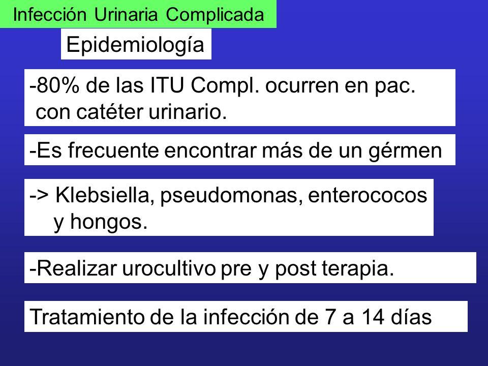 Infección Urinaria Complicada Epidemiología -80% de las ITU Compl. ocurren en pac. con catéter urinario. -Es frecuente encontrar más de un gérmen -> K