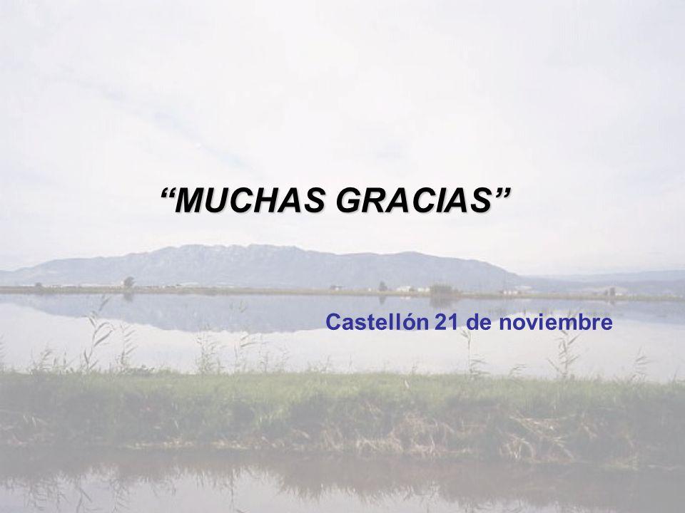 MUCHAS GRACIAS Castellón 21 de noviembre