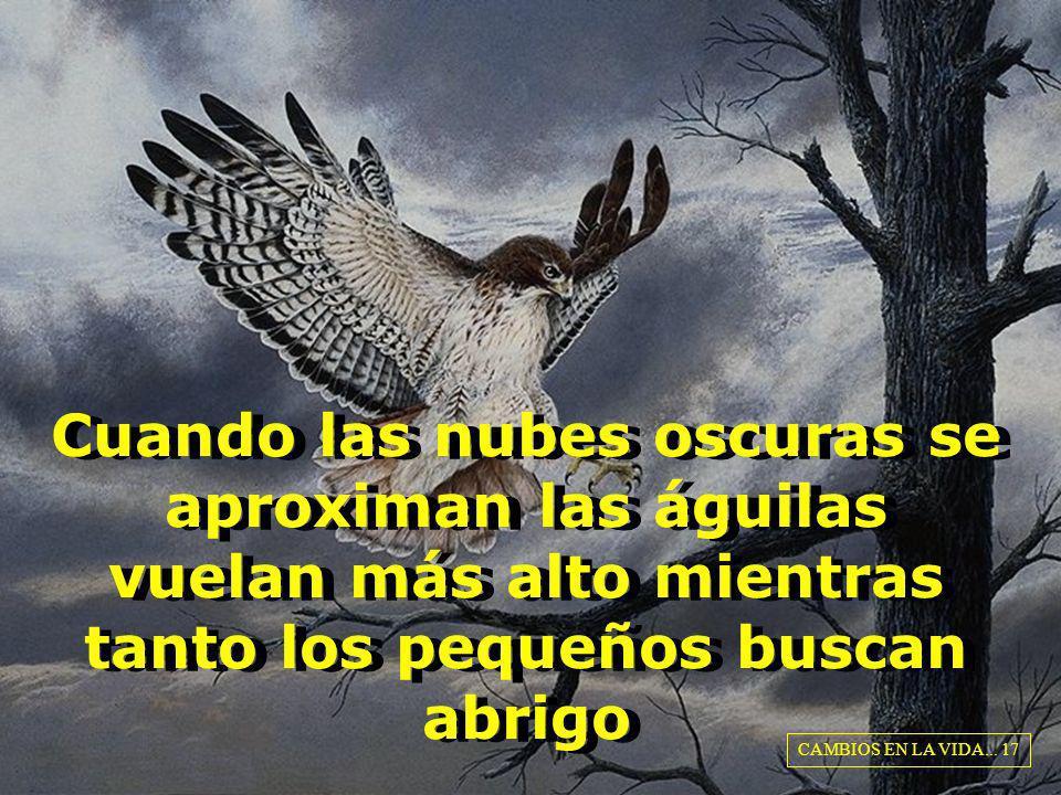 Cuando las nubes oscuras se aproximan las águilas vuelan más alto mientras tanto los pequeños buscan abrigo CAMBIOS EN LA VIDA... 17