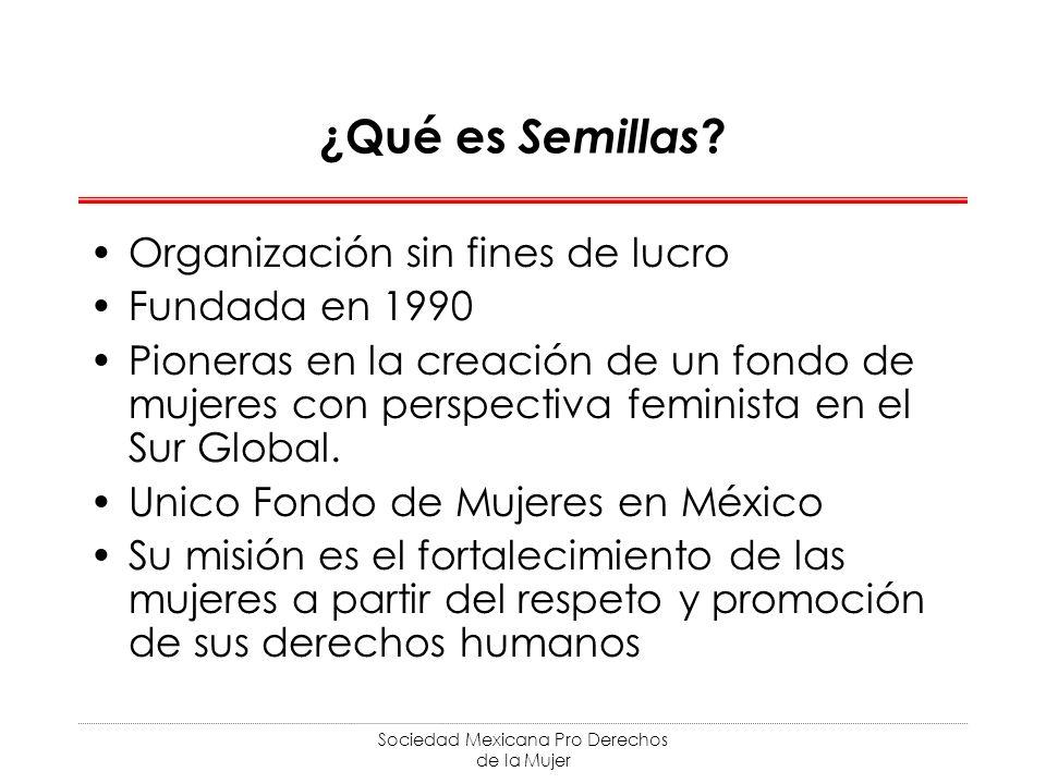 Sociedad Mexicana Pro Derechos de la Mujer ¿Qué es Semillas ? Organización sin fines de lucro Fundada en 1990 Pioneras en la creación de un fondo de m