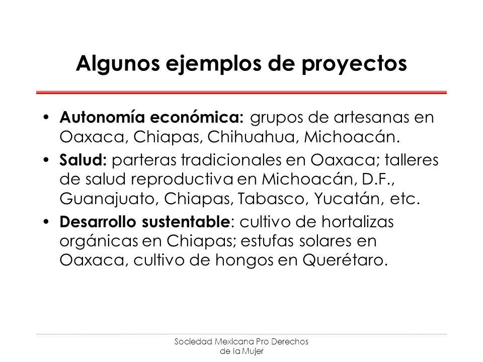 Sociedad Mexicana Pro Derechos de la Mujer Algunos ejemplos de proyectos Autonomía económica: grupos de artesanas en Oaxaca, Chiapas, Chihuahua, Micho