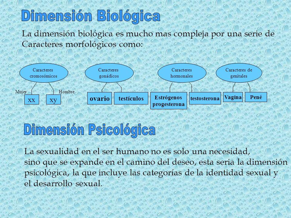 La dimensión biológica es mucho mas compleja por una serie de Caracteres morfológicos como: Caracteres cromosómicos Caracteres gonádicos Caracteres ho