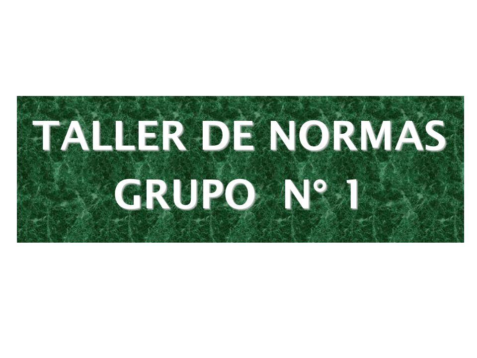 TALLER DE NORMAS GRUPO N° 1