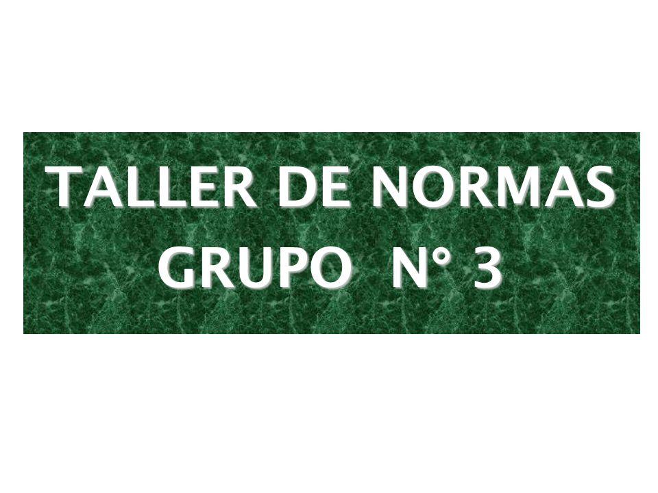 TALLER DE NORMAS GRUPO N° 3