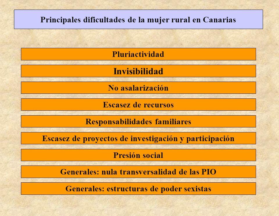 Principales dificultades de la mujer rural en Canarias Pluriactividad Responsabilidades familiares No asalarización Escasez de recursos Invisibilidad