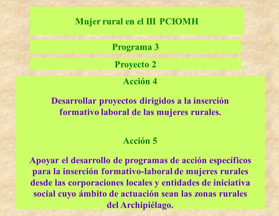 Mujer rural en el III PCIOMH Programa 3 Proyecto 2 Acción 4 Desarrollar proyectos dirigidos a la inserción formativo laboral de las mujeres rurales. A