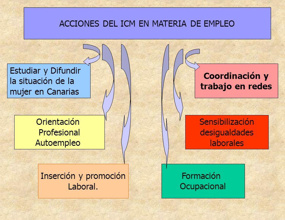 ACCIONES DEL ICM EN MATERIA DE EMPLEO Estudiar y Difundir la situación de la mujer en Canarias Orientación Profesional Autoempleo Inserción y promoció