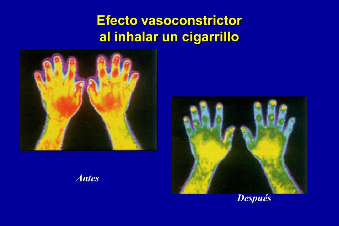 Efecto vasoconstrictor al inhalar un cigarrillo Antes Después