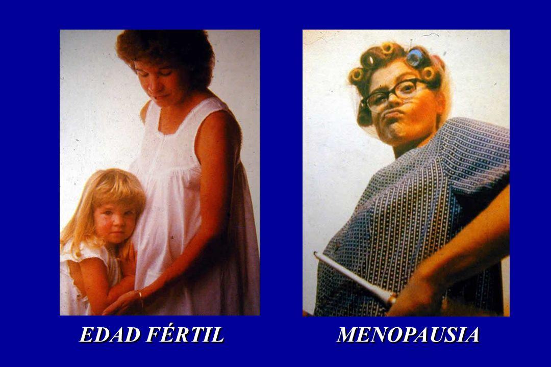 MENOPAUSIA EDAD FÉRTIL