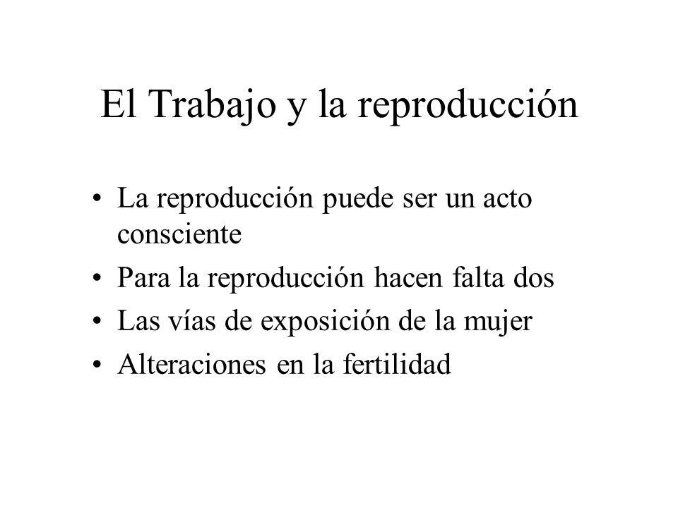 El Trabajo y la reproducción La reproducción puede ser un acto consciente Para la reproducción hacen falta dos Las vías de exposición de la mujer Alteraciones en la fertilidad