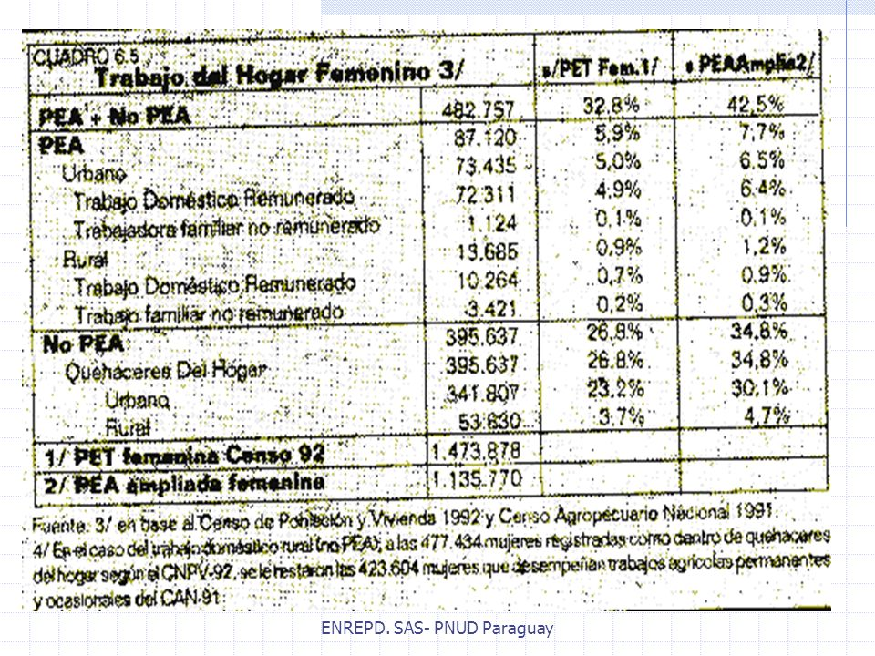 ENREPD. SAS- PNUD Paraguay