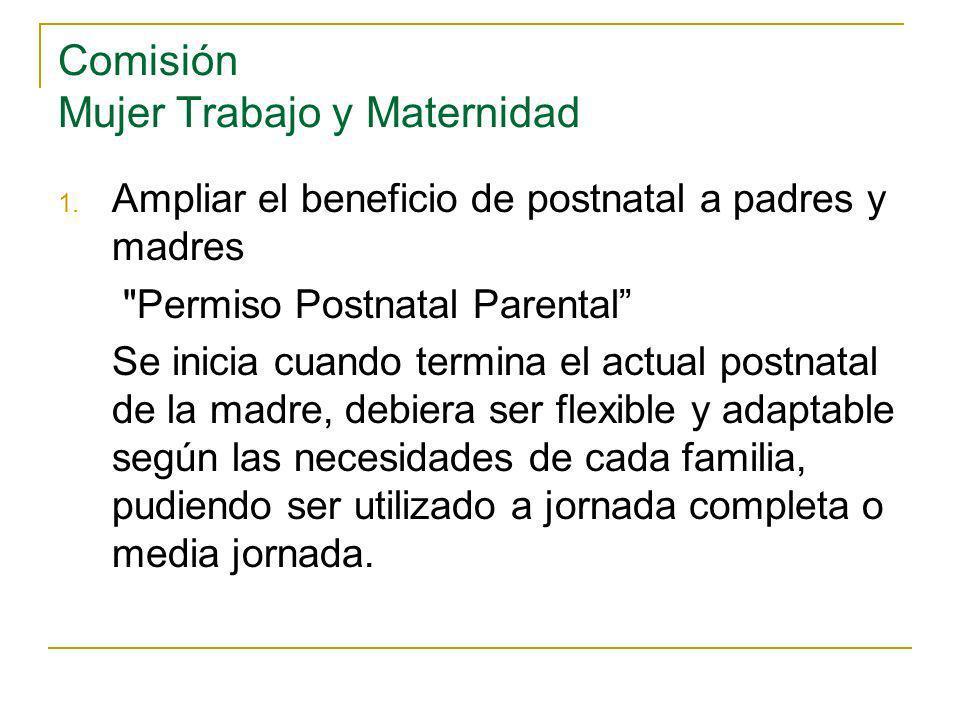 Comisión Mujer Trabajo y Maternidad 1.
