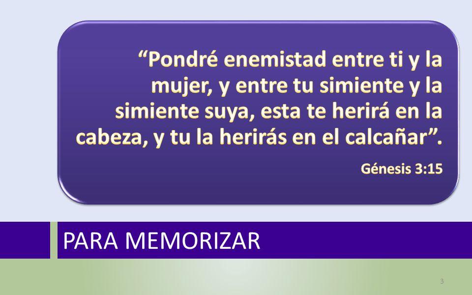 PARA MEMORIZAR 3