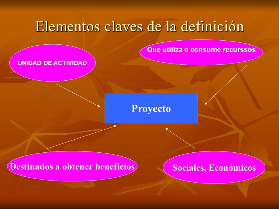 Elementos claves de la definición UNIDAD DE ACTIVIDAD Proyecto Que utiliza o consume recurssos Destinados a obtener beneficios Sociales, Económicos