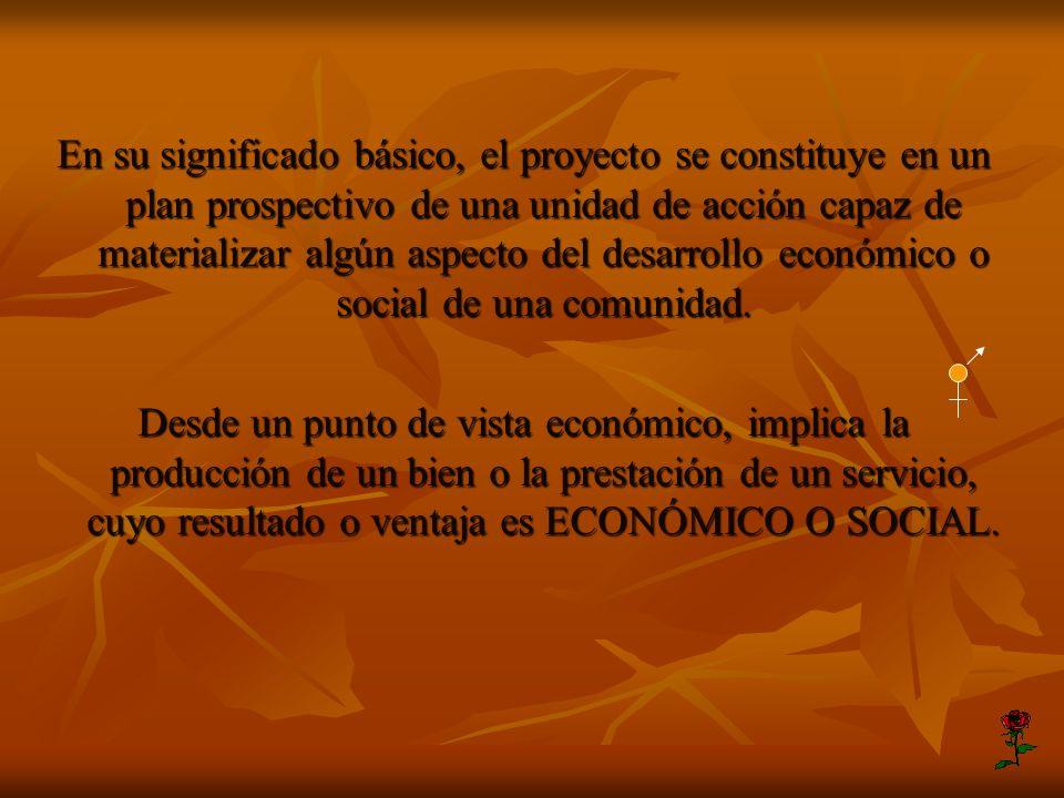 En su significado básico, el proyecto se constituye en un plan prospectivo de una unidad de acción capaz de materializar algún aspecto del desarrollo económico o social de una comunidad.