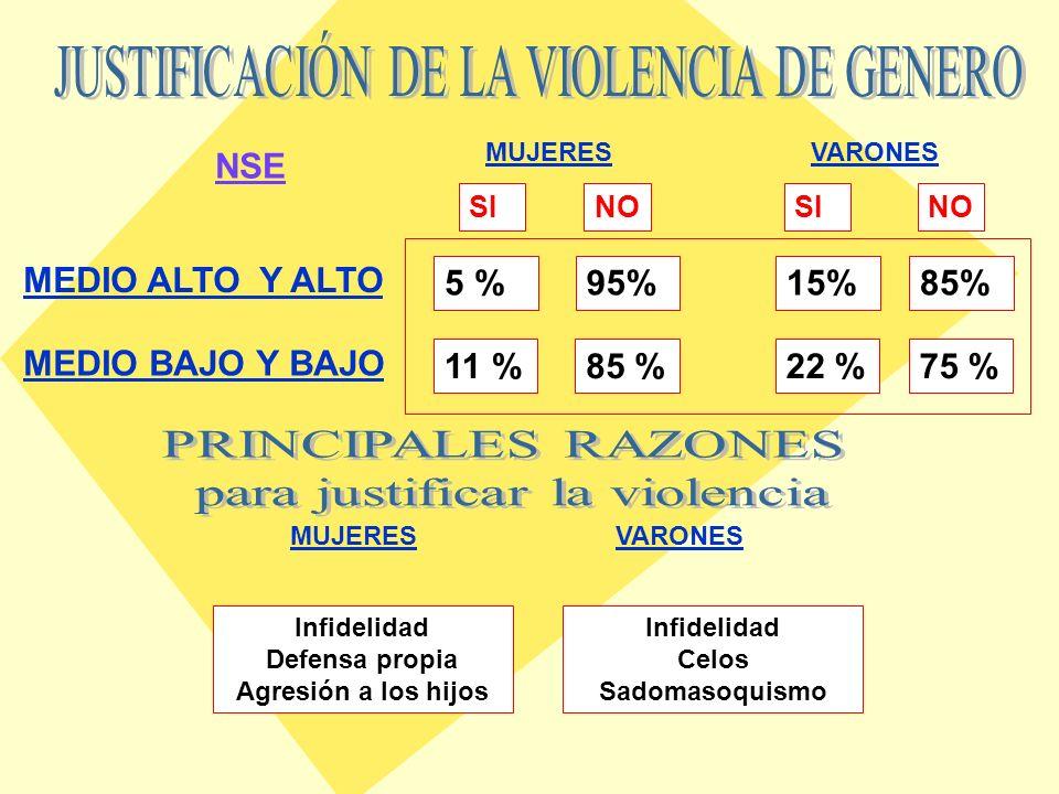 MEDIO ALTO Y ALTO MEDIO BAJO Y BAJO VARONESMUJERES 20 % 27 % 16 % VARONESMUJERES 4.8 % 18 %10 % 4.5 % MEDIO ALTO Y ALTO MEDIO BAJO Y BAJO NSE