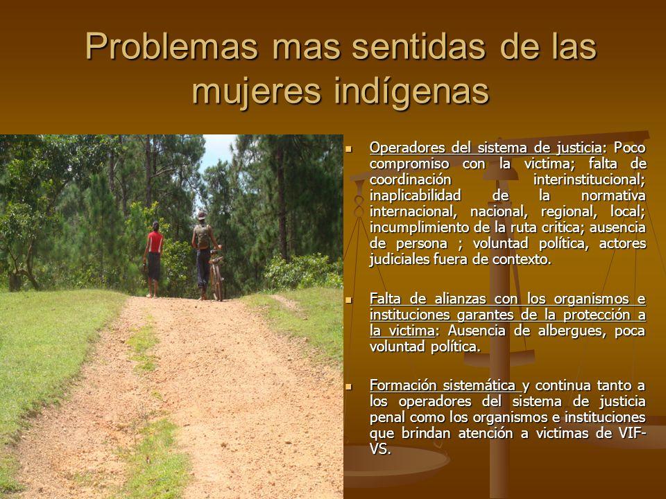 Problemas mas sentidas de las mujeres indígenas Operadores del sistema de justicia: Poco compromiso con la victima; falta de coordinación interinstitu