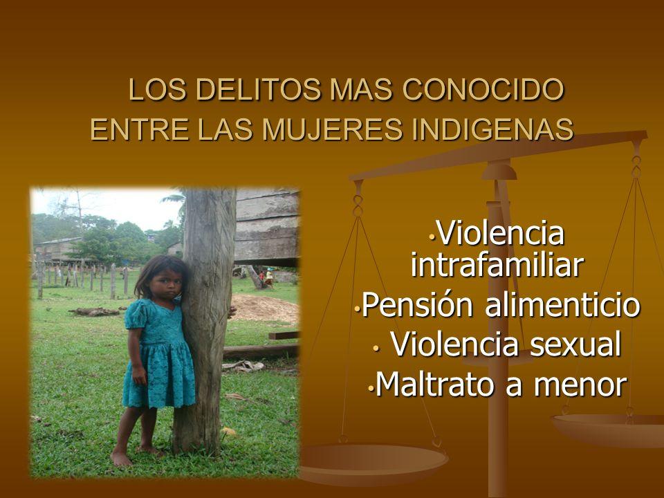 LOS DELITOS MAS CONOCIDO ENTRE LAS MUJERES INDIGENAS LOS DELITOS MAS CONOCIDO ENTRE LAS MUJERES INDIGENAS Violencia intrafamiliar Violencia intrafamil