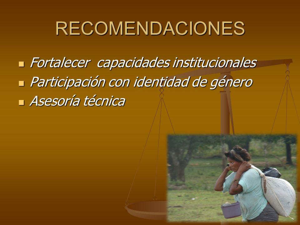 RECOMENDACIONES Fortalecer capacidades institucionales Fortalecer capacidades institucionales Participación con identidad de género Participación con