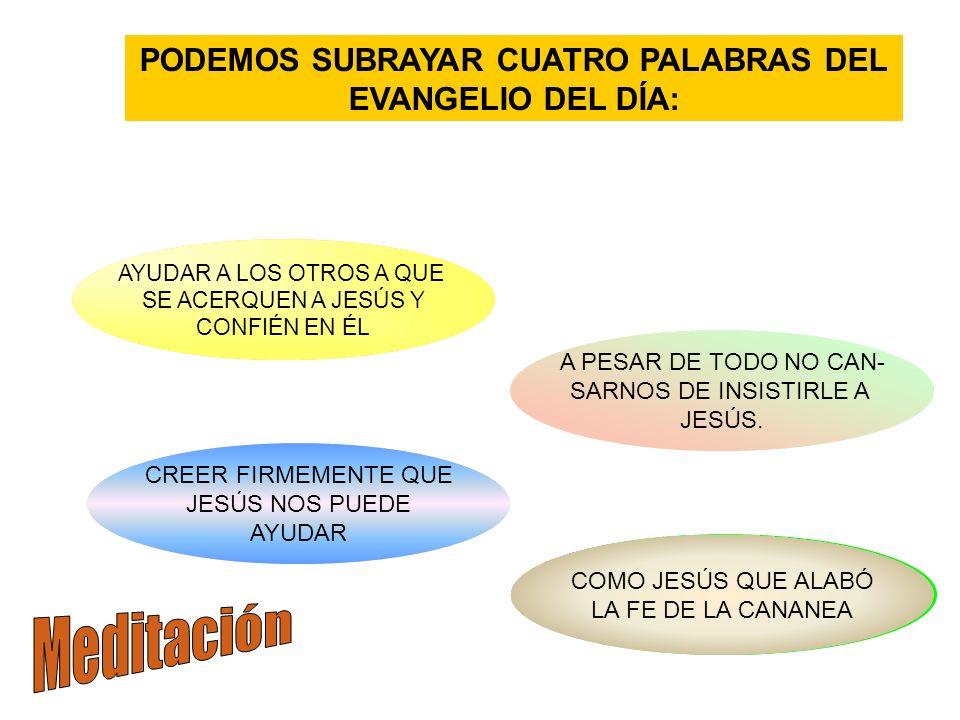 PODEMOS SUBRAYAR CUATRO PALABRAS DEL EVANGELIO DEL DÍA: ACERCAR RECONOCER LA FE INSISTIR TENER FE AYUDAR A LOS OTROS A QUE SE ACERQUEN A JESÚS Y CONFIÉN EN ÉL COMO JESÚS QUE ALABÓ LA FE DE LA CANANEA A PESAR DE TODO NO CAN- SARNOS DE INSISTIRLE A JESÚS.