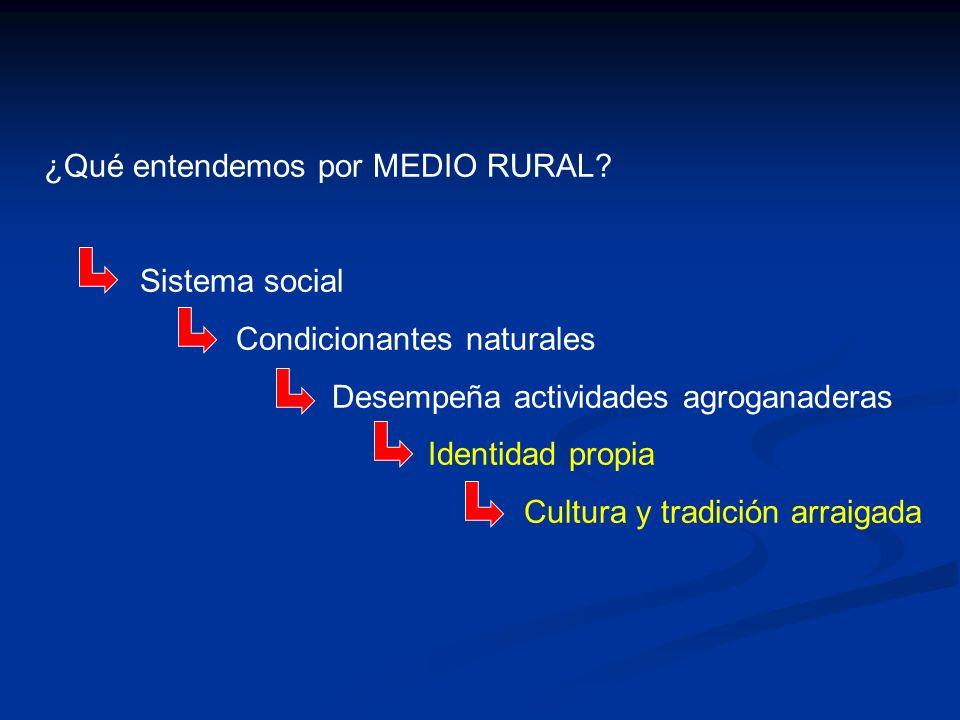 ¿Qué entendemos por MEDIO RURAL? Sistema social Condicionantes naturales Desempeña actividades agroganaderas Identidad propia Cultura y tradición arra