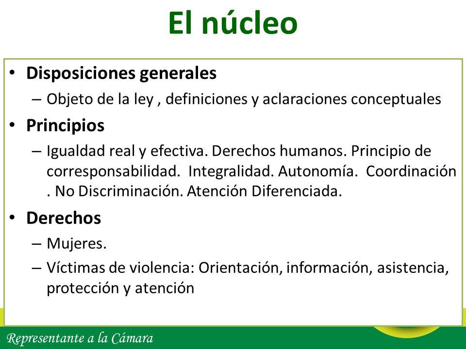 El núcleo Disposiciones generales – Objeto de la ley, definiciones y aclaraciones conceptuales Principios – Igualdad real y efectiva. Derechos humanos