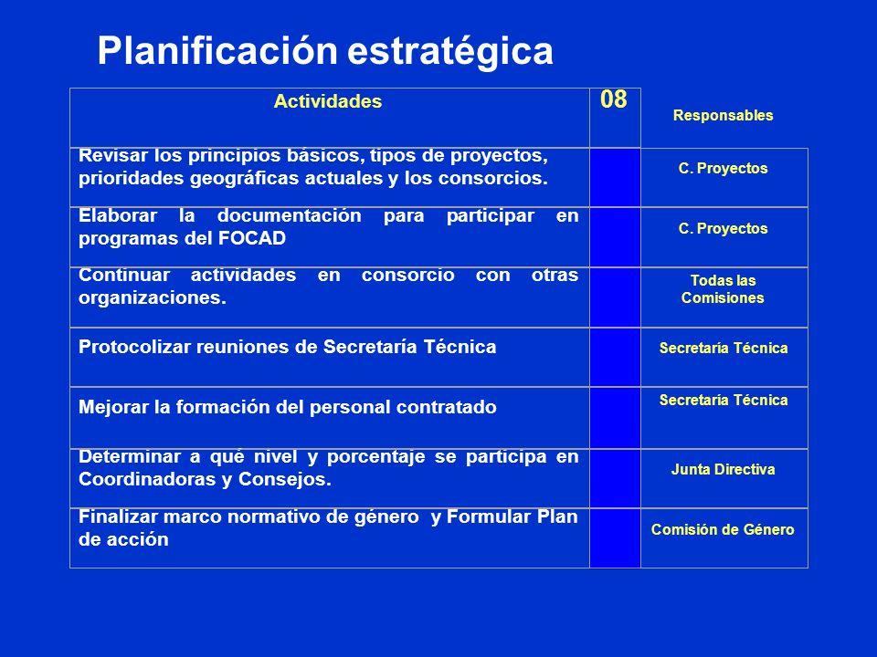 Planificación estratégica Responsables Actividades 08 Revisar los principios básicos, tipos de proyectos, prioridades geográficas actuales y los consorcios.