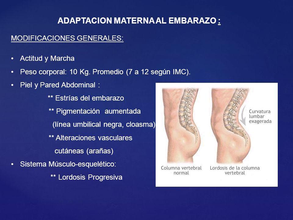 MODIFICACIONES GENERALES: Actitud y Marcha Peso corporal: 10 Kg.