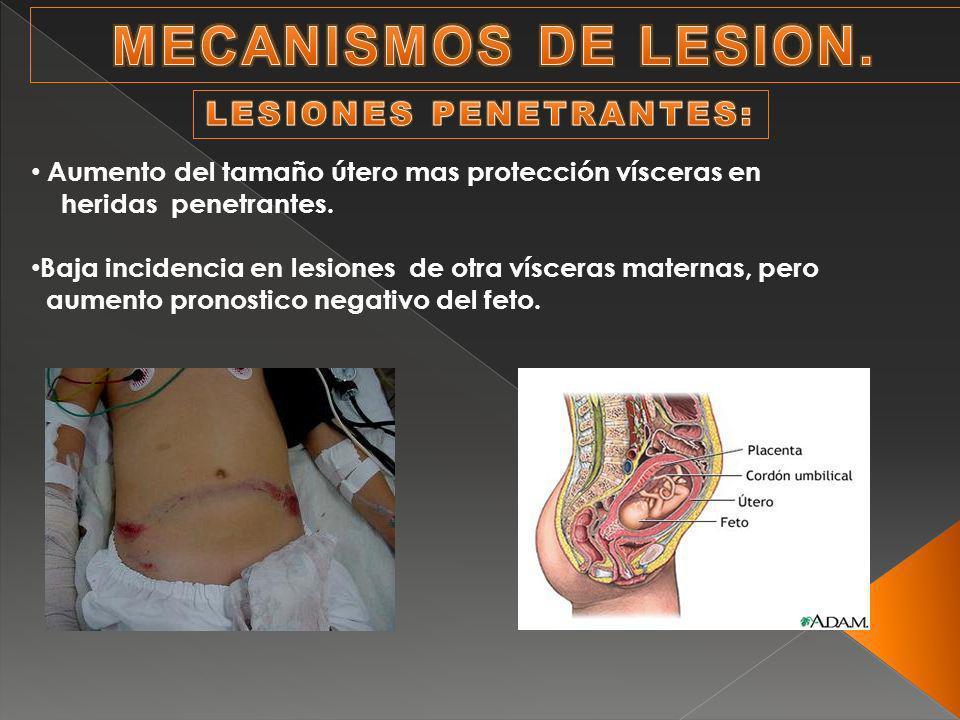 Aumento del tamaño útero mas protección vísceras en heridas penetrantes.
